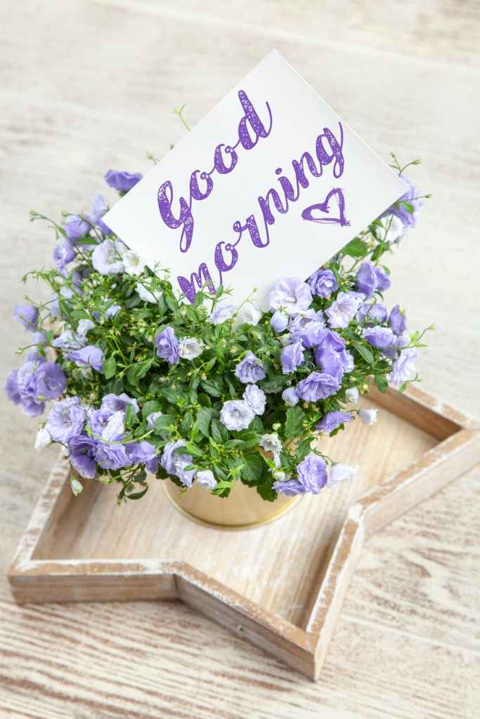 purple flowers in a gold vase sitting inside a wooden star shaped tray